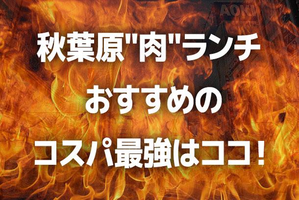 """秋葉原""""肉""""ランチ おすすめのコスパ最強はココ!"""